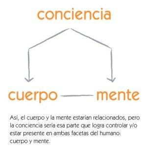 esquema del ser humano